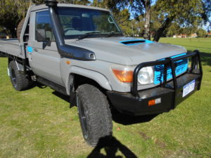 Nardoo Grey landcruiser